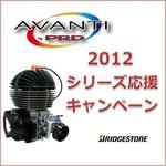2012_avanti_campaign.jpg